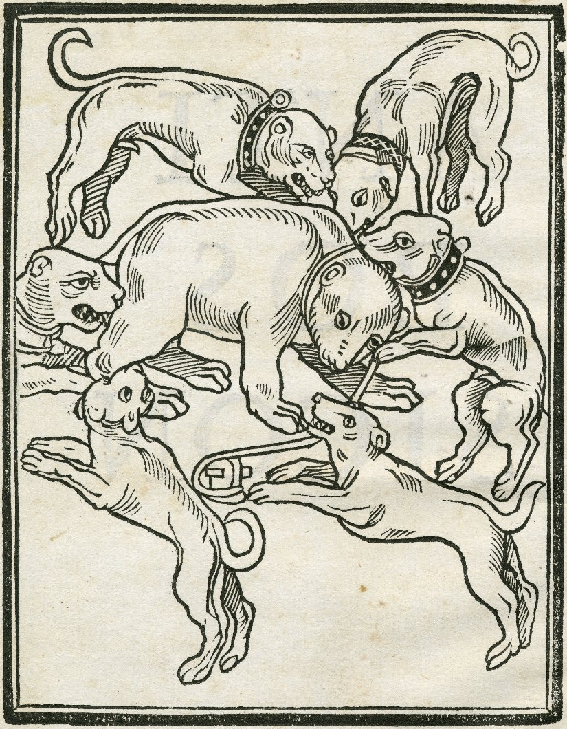 Woodcut image of a bearbaiting from William Lily's Antibossicon (1521). Image courtesy of the Folger Digital Image Collection.
