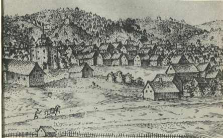 The View of the Cittye of